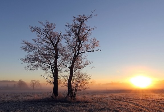 13.12.13 Morgens in Großhartmannsdorf, T-Min -2°C