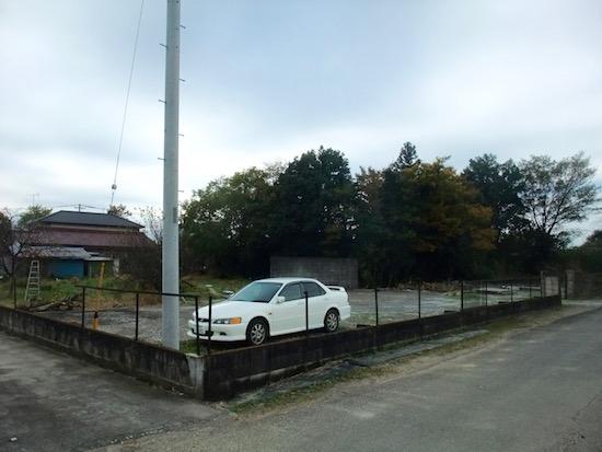 2014.11.08 既存の屋敷林.立派です.