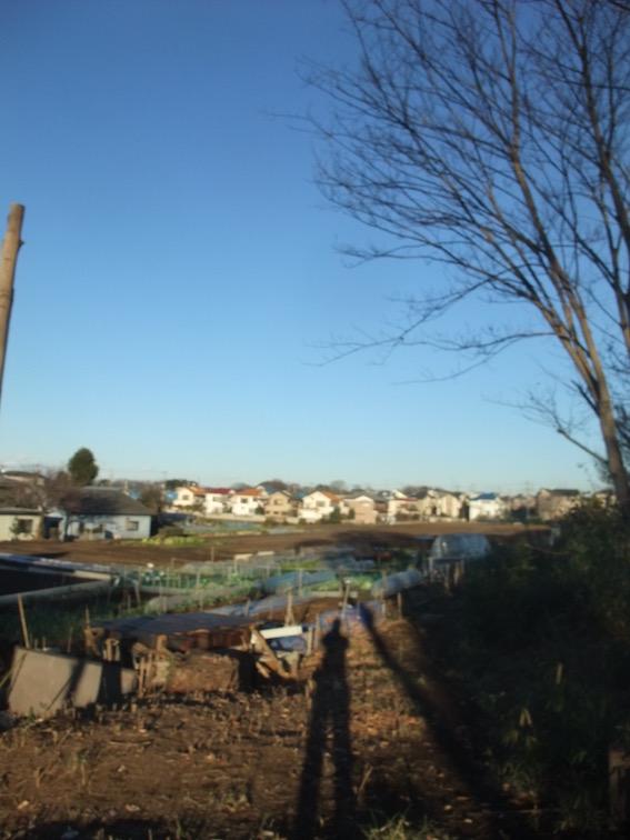 20141222 敷地から望める広大な武蔵野です。