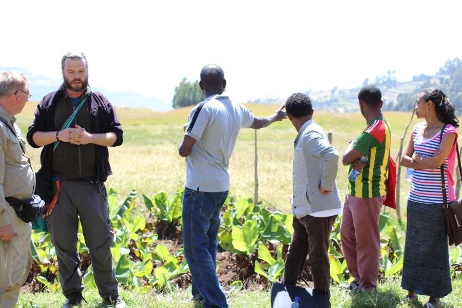 Discussing the work of the Debre Birhan University staff in  the Ankober Tree Nursery.