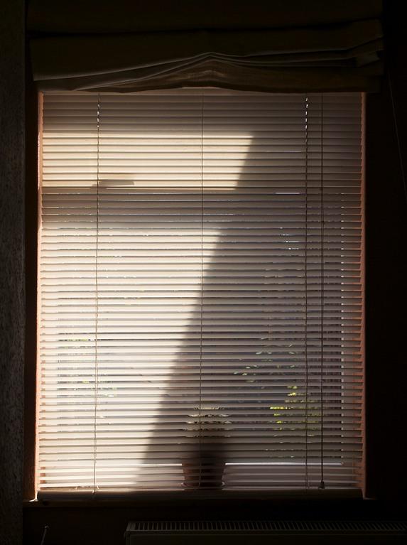 Sun Blind