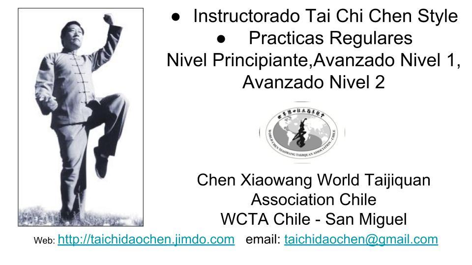 Taijiquan Chen Style Curso de Formacion en San Miguel