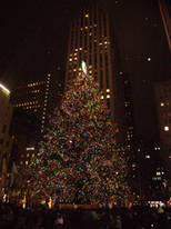 New Yorker Christmas Tree