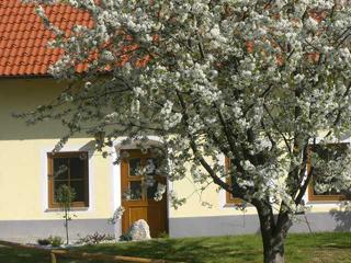 Urlaub am Bauernhof, Bauernhofurlaub, Ponreiten, Farmholiday