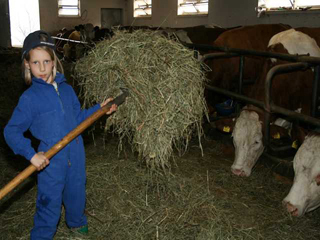 Fütterung unserer Rinder