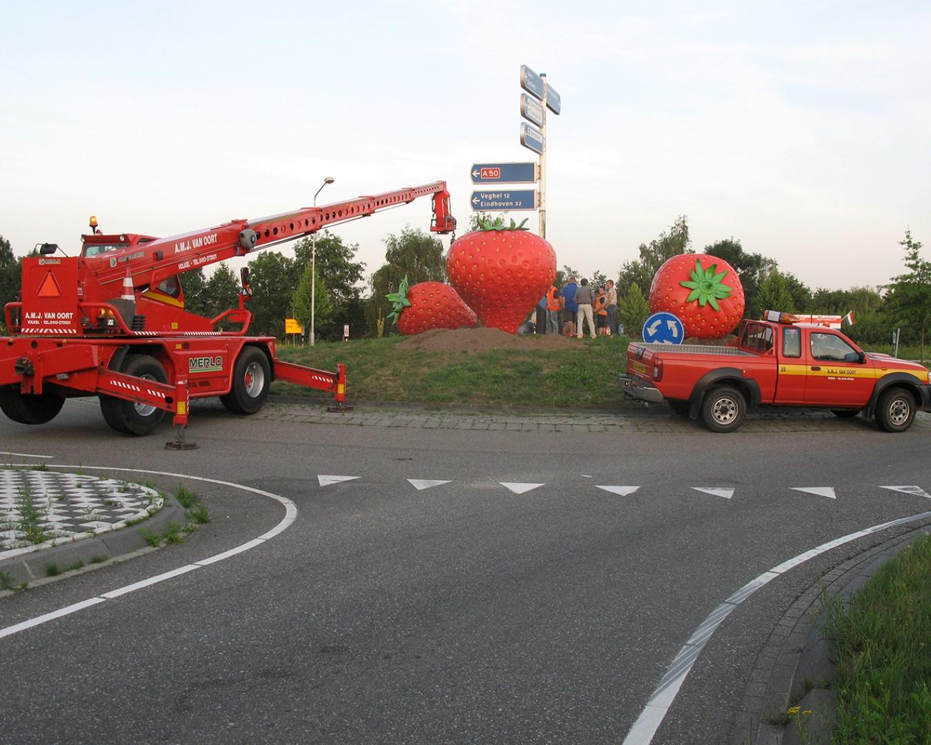 Rotonde Aardbeien van Jan en Birgitte
