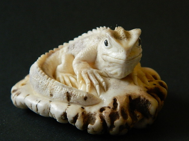 Tuatara / Deer Antler Carving