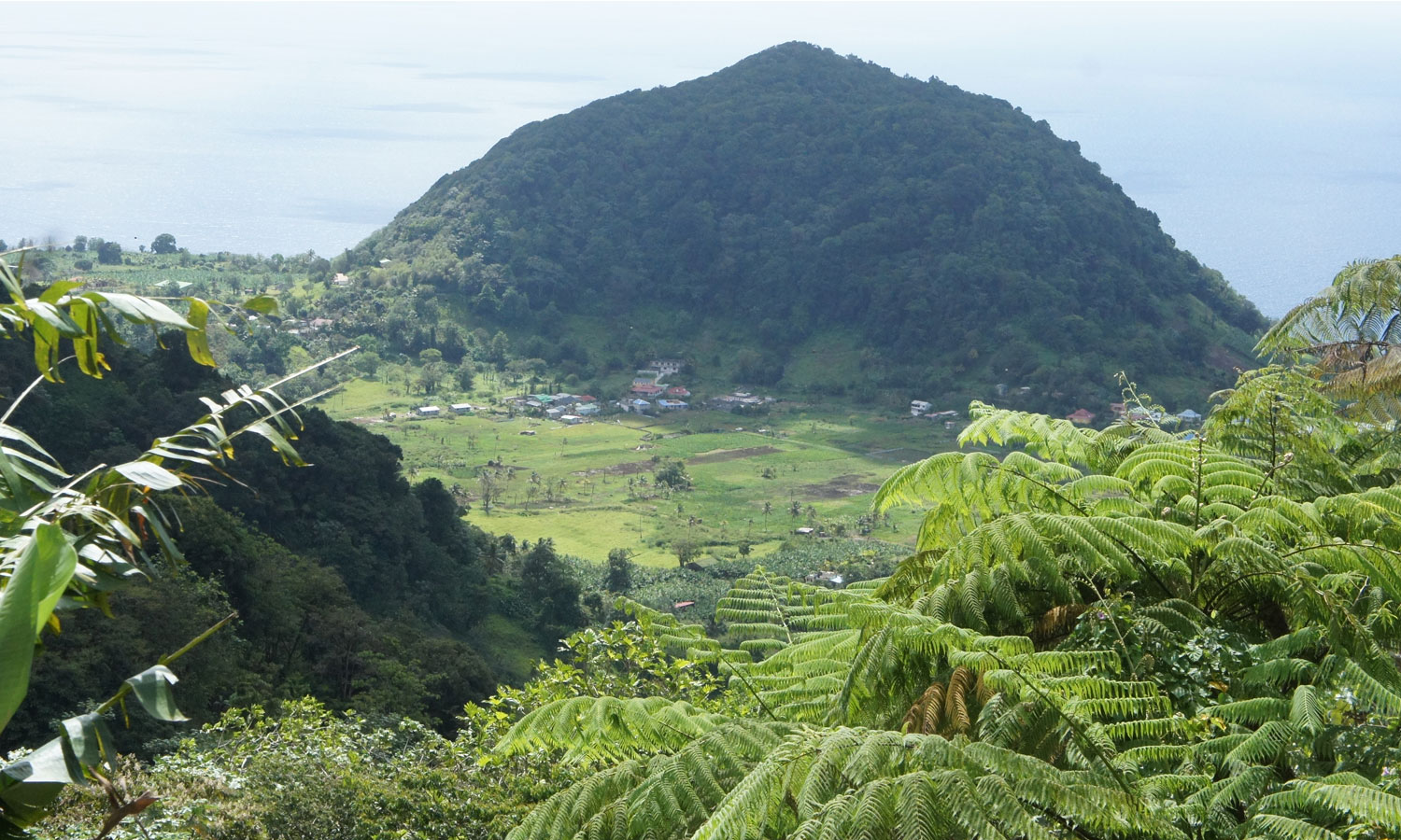 Typical landscape with hills, central plains and coasts (copyright: INRA Antilles Guyane)