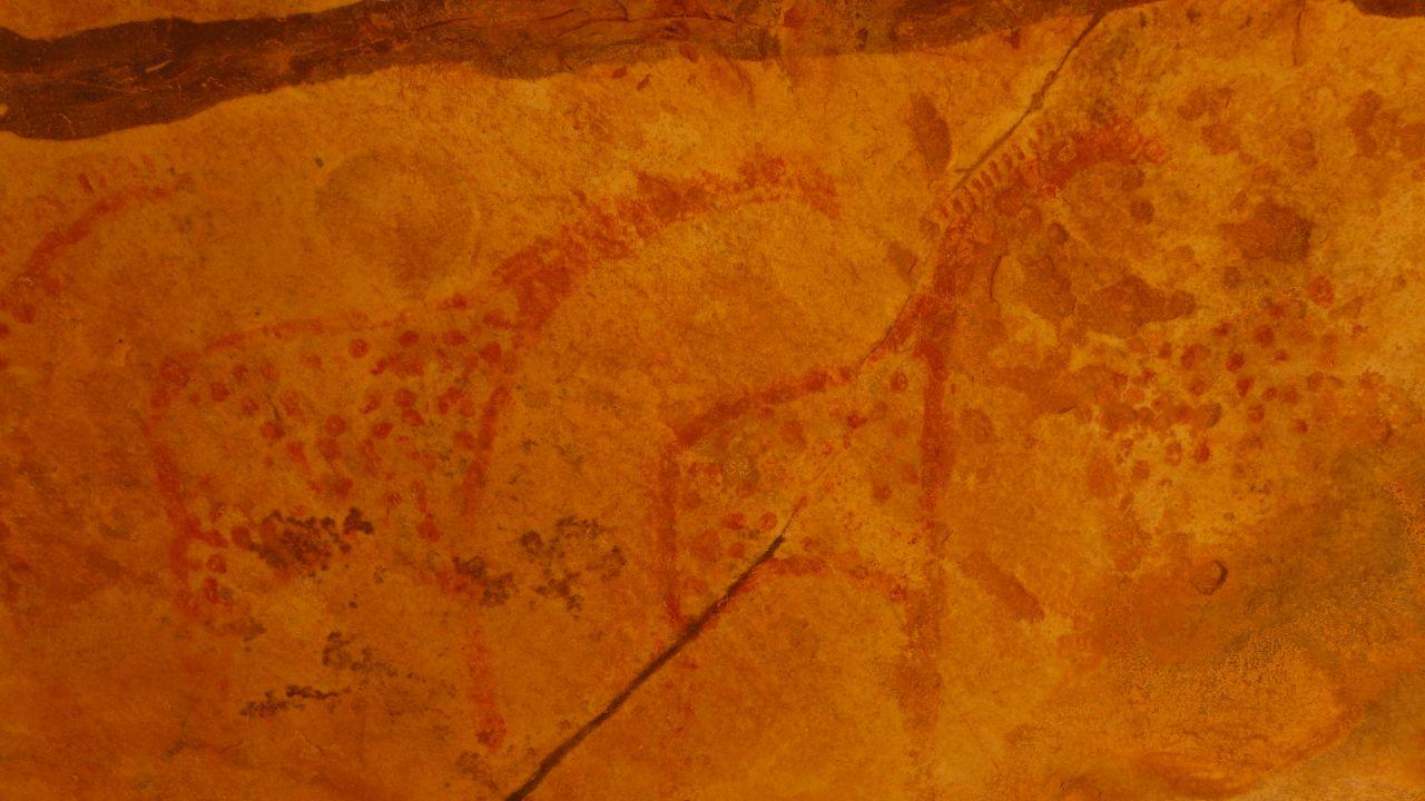 Giraffen unter der Felsplatte