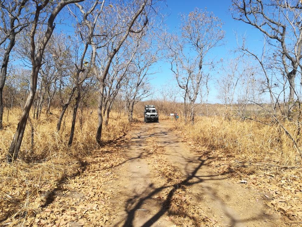 Im National Park unterwegs