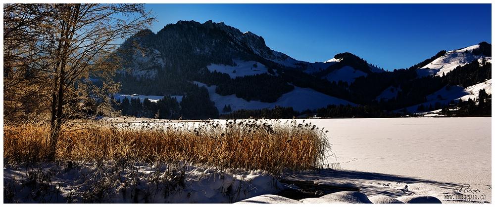 Schwarzsee, Freiburg
