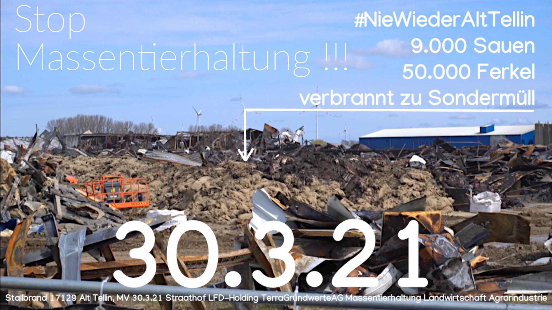 59.000 Schweine verbrannt - schuld ist die Politik von SPD und CDU