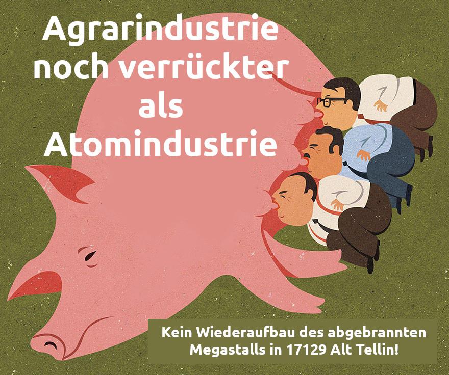 Agrarindustrie noch verrückter als Atomindustrie!