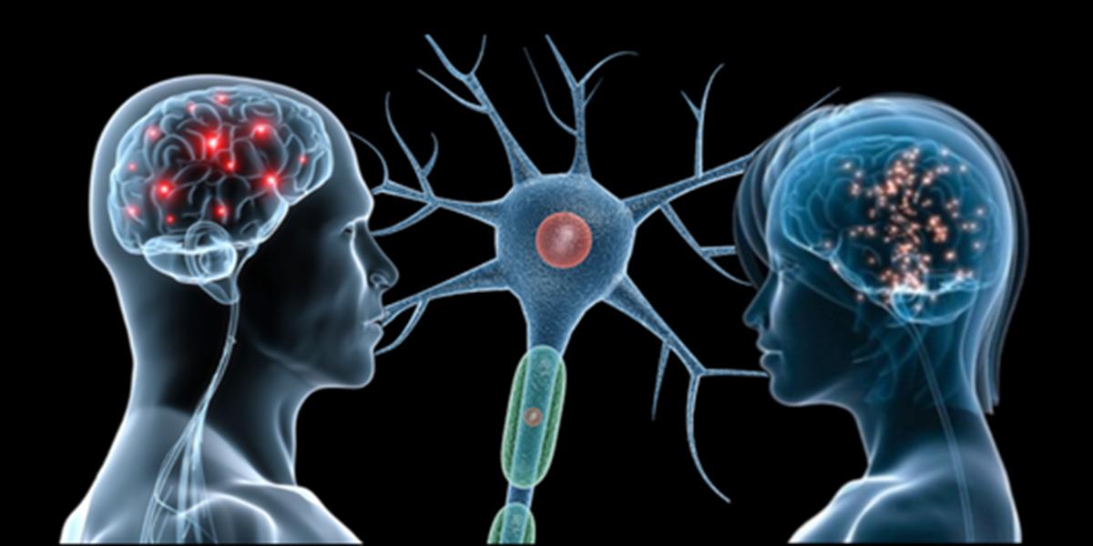 Prospettiva neurosociologica dell'interazione comunicativa