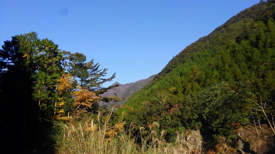 秋の大杉谷