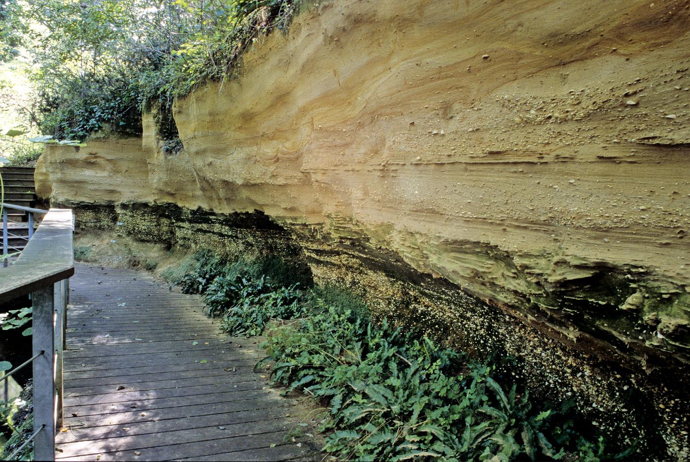 Géologie : falaise de Pont-Pourquey