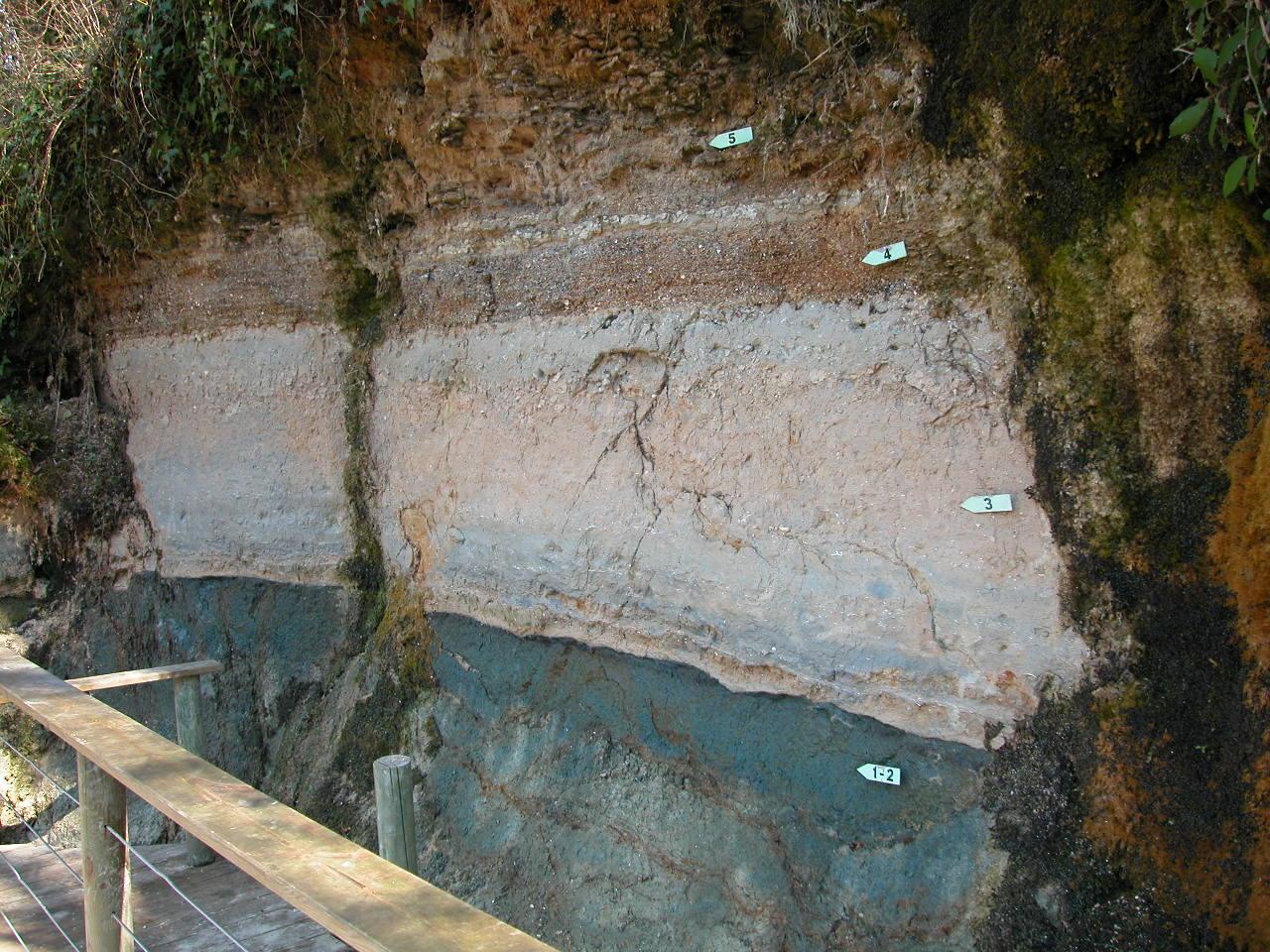 Premier site (le plus ancien) : falaise du Moulin de Bernachon