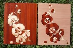 Orchidée     295x230mm