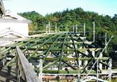 鉄に木のシェル屋根