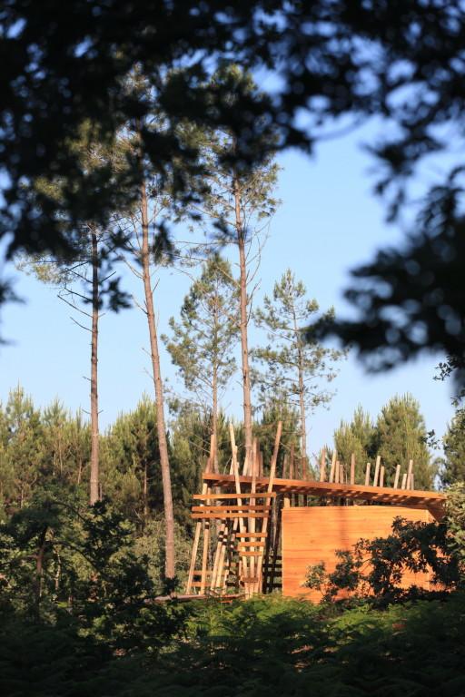 Des structures en pin des landes