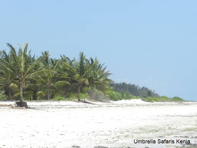Strand Diani Beach Kenia
