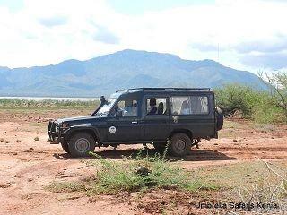 Safaris in Kenia im Jeep oder Safaribus, wo ist der Unterschied