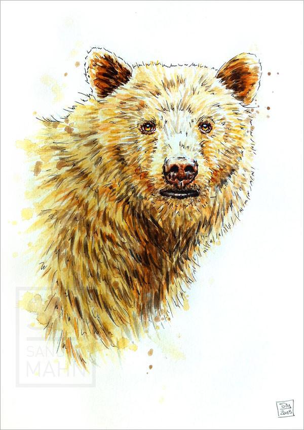 Kermodebär | kermode bear