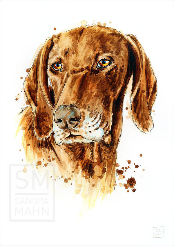 Hund | dog