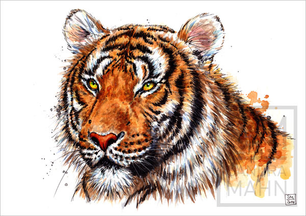 Tiger | tiger