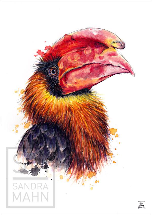 Nashornvogel (verkauft) | hornbill (sold)
