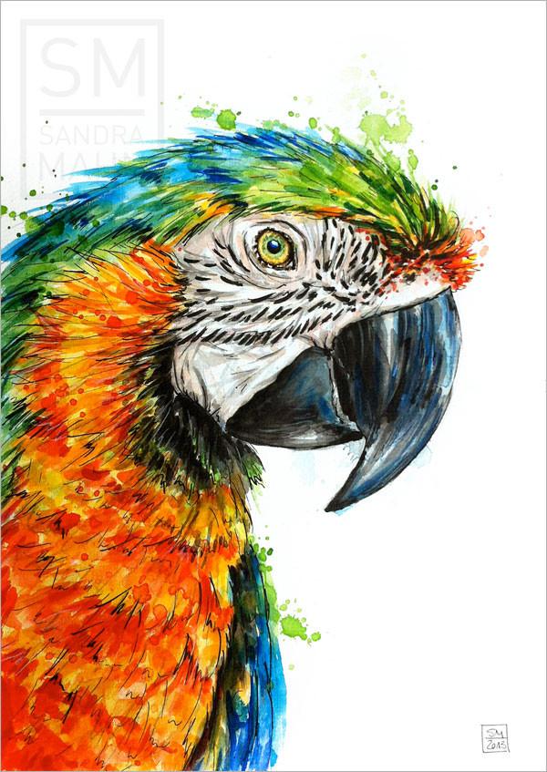 Papagei (verkauft) | macaw (sold)