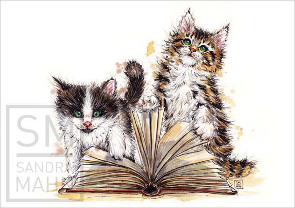Katzen mit Buch | cats with book