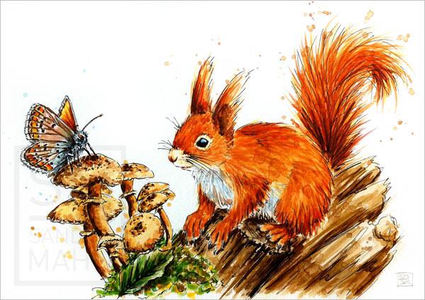 Eichhörnchen (verkauft) | red squirrel (sold)