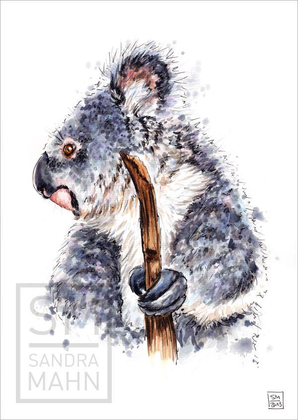 Koalabär (verkauft) | koala (sold)