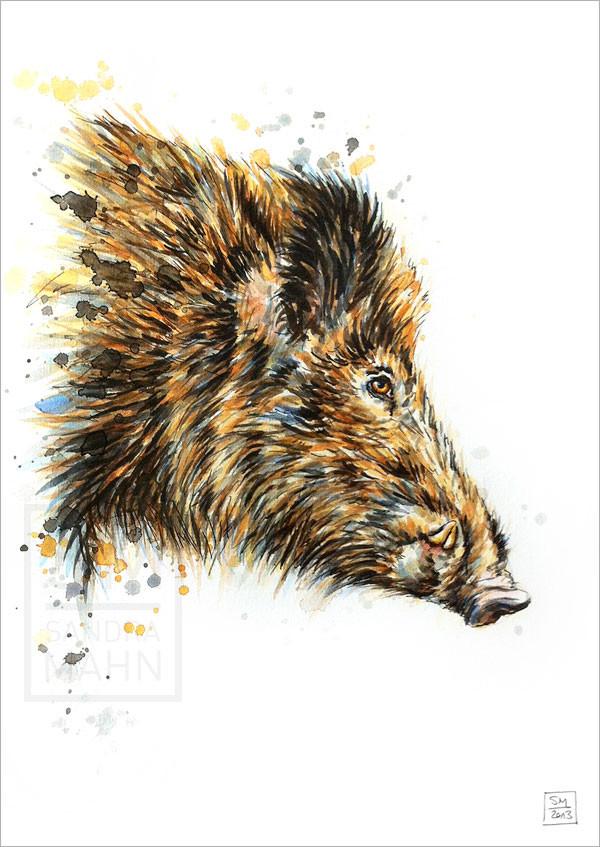 Wildschwein (verkauft) | wild boar (sold)
