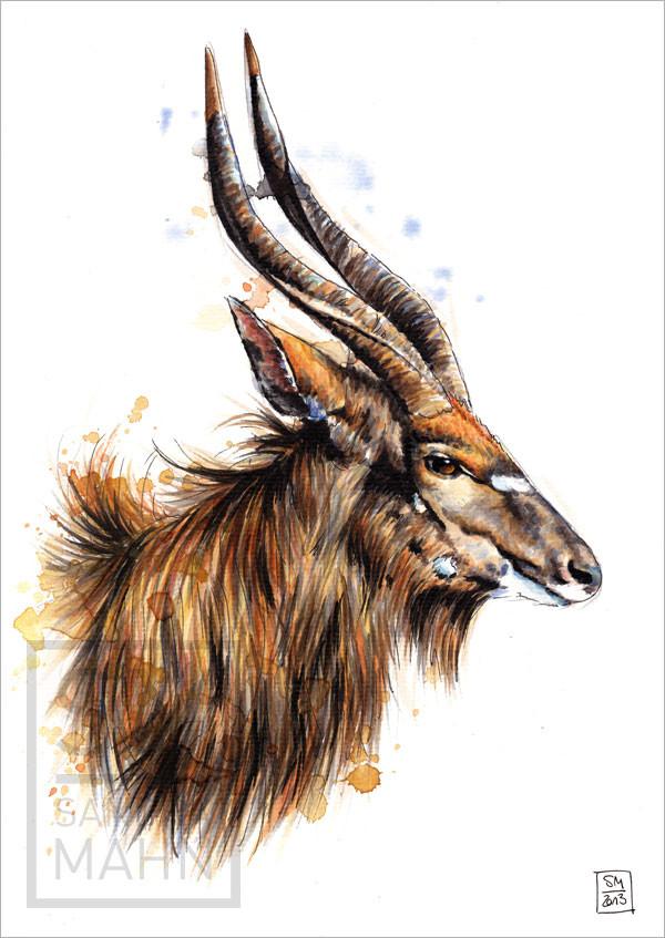 Nyala Antilope (verkauft) | nyala antelope (sold)