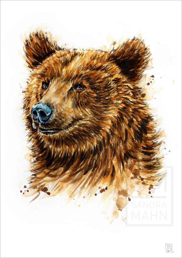 Bär (verkauft) | bear (sold)