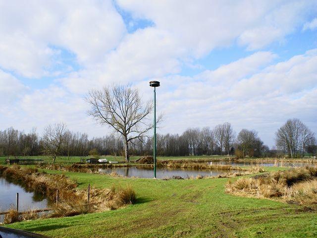Neues Storchennest auf dem Teichgrundstück der Familie Meinert