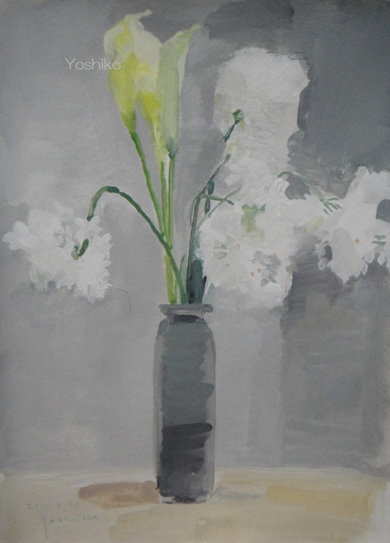 白い花とカラー   4号ガッシュ 白い花はアリウム・コワニーという花です。2011.3.24