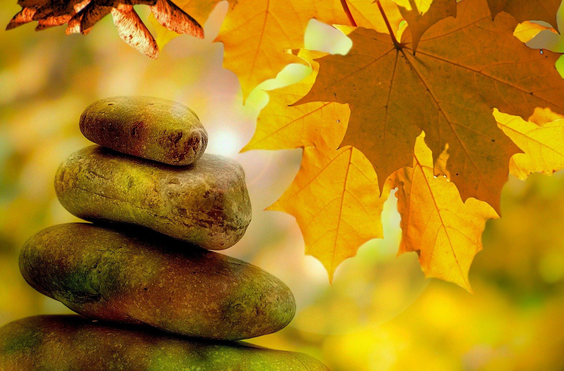 Kontemplation im Herbst