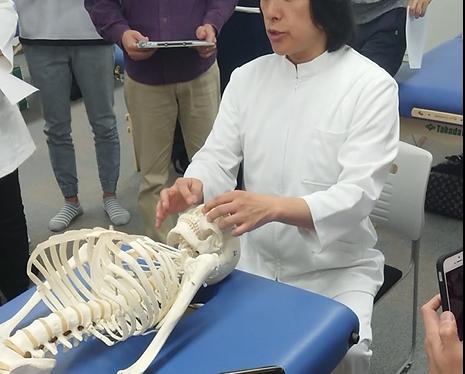 DRT|八幡西区 若松区の自律神経を整えるひびきのカイロプラクティック