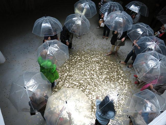 55. Biennale, Venedig, 2013