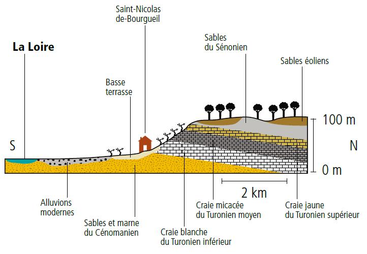 Coupe géologique Saint Nicolas de Bourgueil