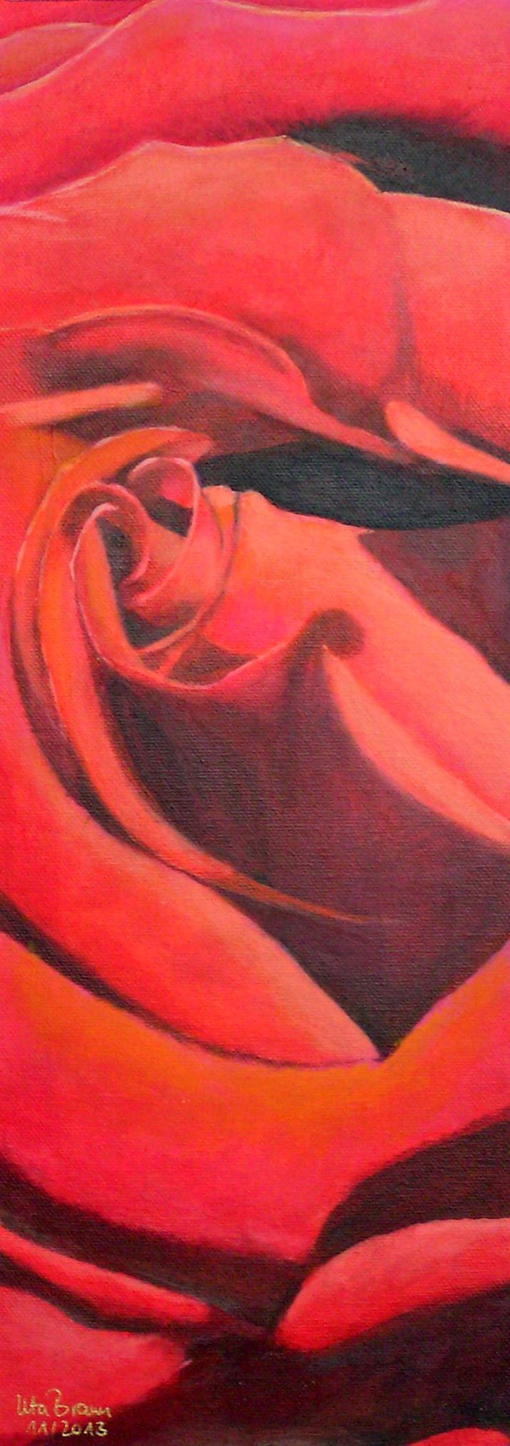Blütenstruktur rot- Rose(20 x 50)