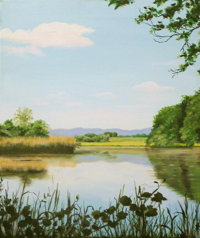Froschkonzert am Killenweiher (50 x 60)