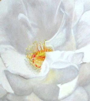 Golden Moonlight (1) (60 x 60)