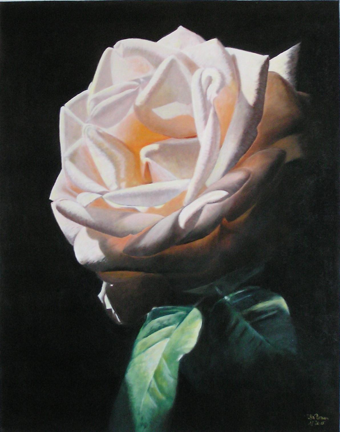 Rosenkabinett die Geheimnisvolle (80 x 100)