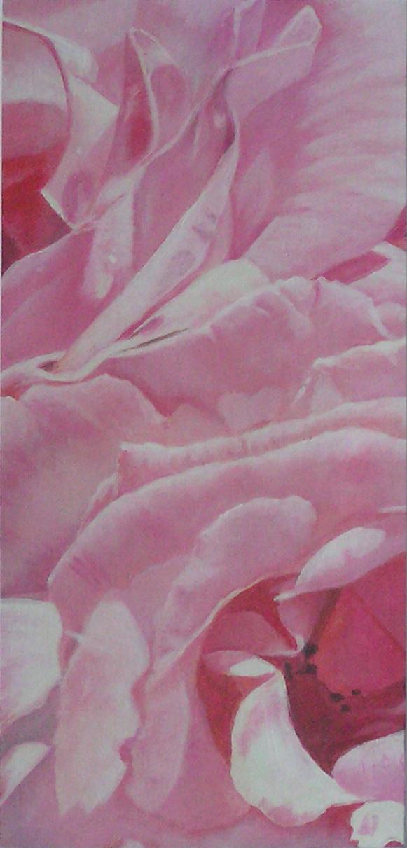 Blütenstruktur rosé- Junirose (17 x 36)