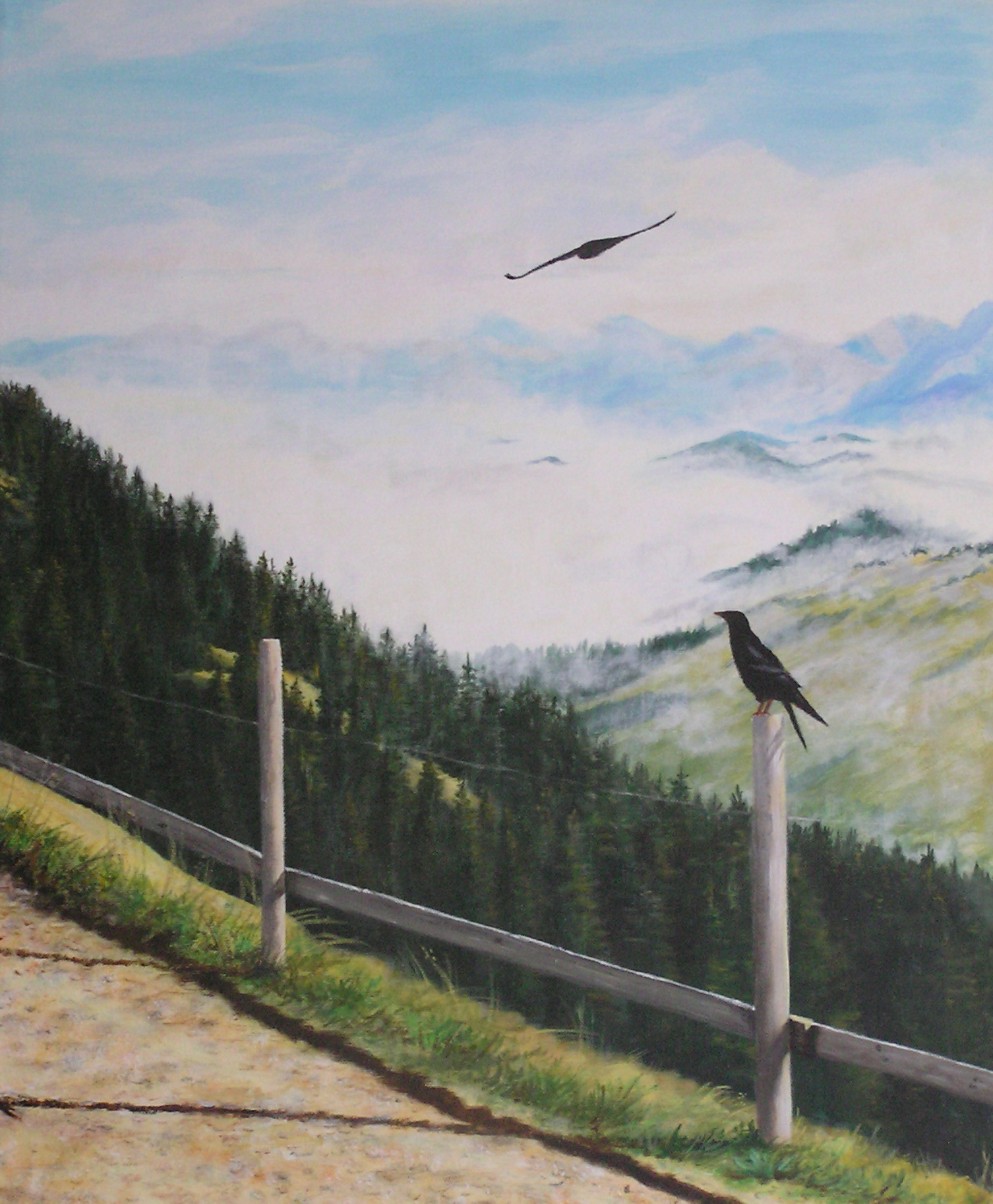 Bergdohlen am Hochgrat (50 x 60)