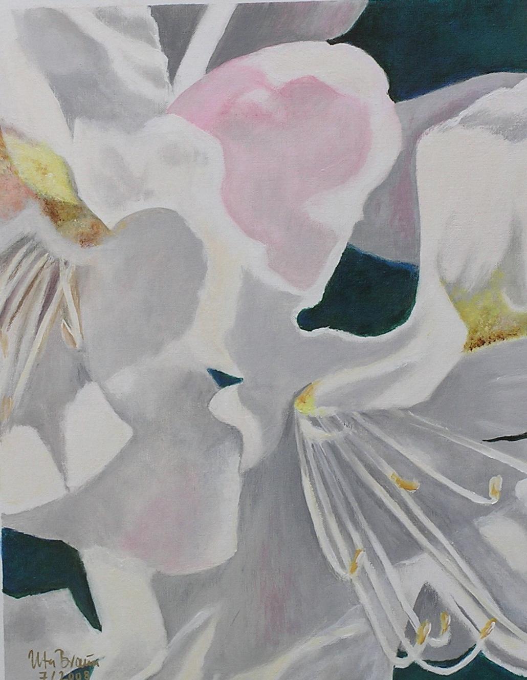 Blütenstruktur weißer Rhododendron (2) (40 x 50)